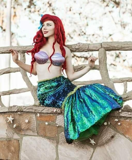 The Little Mermaid Princess