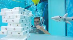 clear-lounge-underwater-oxygen-bar-5