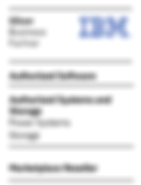 IBM-Silver-Business-Partner_Authorized_S