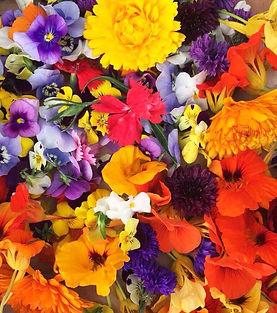 hearn-vale-veggies-edible-flowers.jpg
