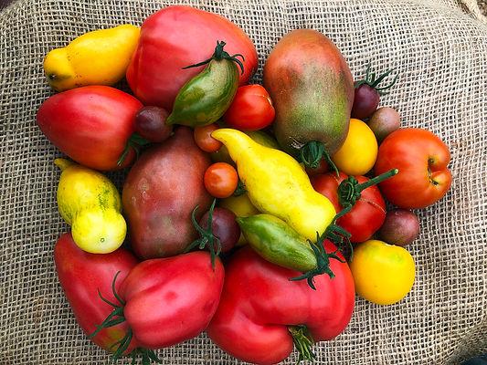 hearn-vale-veggies-gallery.jpg