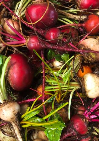 hern-vale-vegatables.jpg