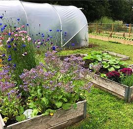 hearn-vale-edible-garden.jpg