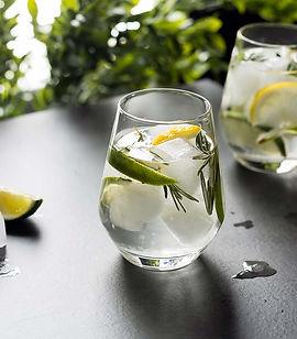 gin-tonic-drink.jpg
