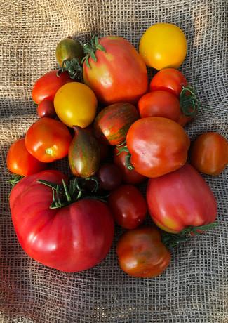 locally-grown-vegetables-7.jpg