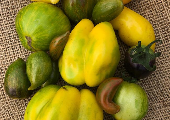 locally-grown-vegetables-9.jpg