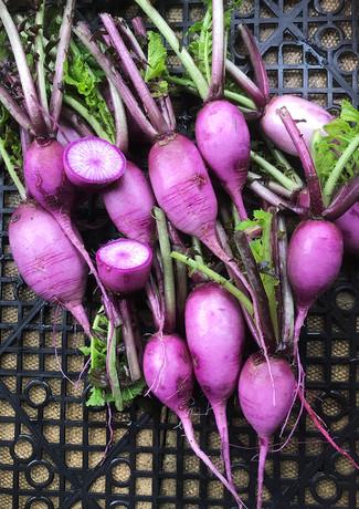 locally-grown-vegetables-1.jpg