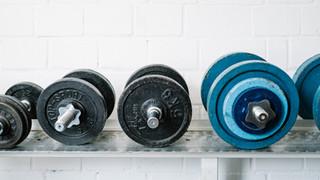 SL42 Weights
