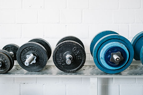 set of weights for fitness training