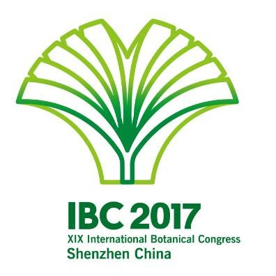 Shenzhen goes green for IBC 2017