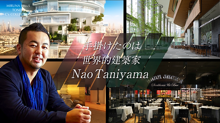 Nao_taniyama.png
