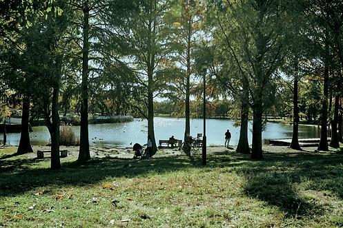 舎人公園_MG_6722.png