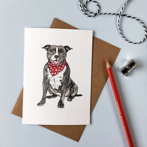 Staffordshire Bull Terrier in a Scarf Greetings Card