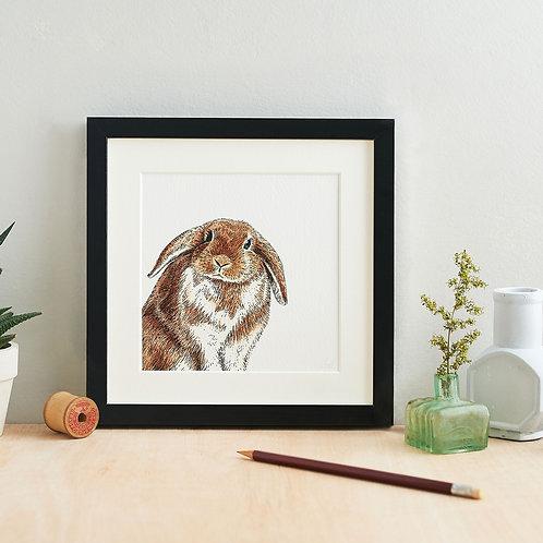 Peeking Rabbit Giclee Art Print