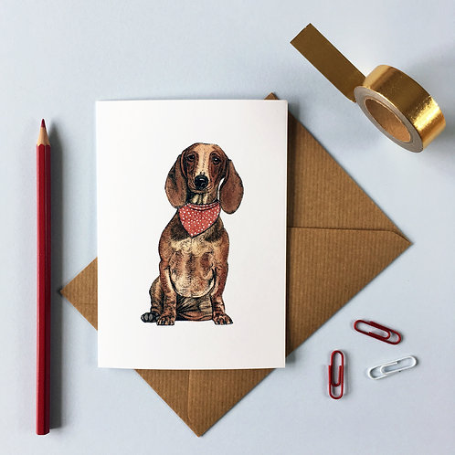 Dachshund/Sausage Dog in a Scarf Greetings Card