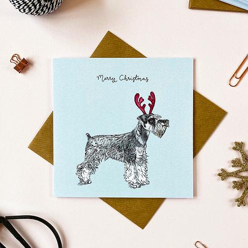 Festive Miniature Schnauzer Christmas Card