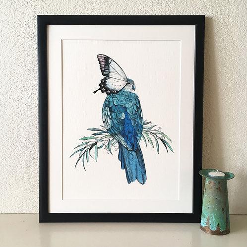 Bird/Butterfly Giclée Print (Turquoise)