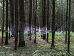 Гид по выставочному проекту «ЧА ЩА. Выставка в лесах»