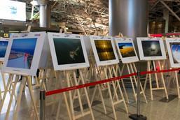 Фотовыставка «Небо, самолет, Turkish Airlines» в аэропорту Внуково