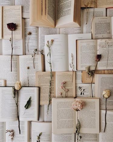 5 книг, чтобы открыть искусство заново, не выходя из дома