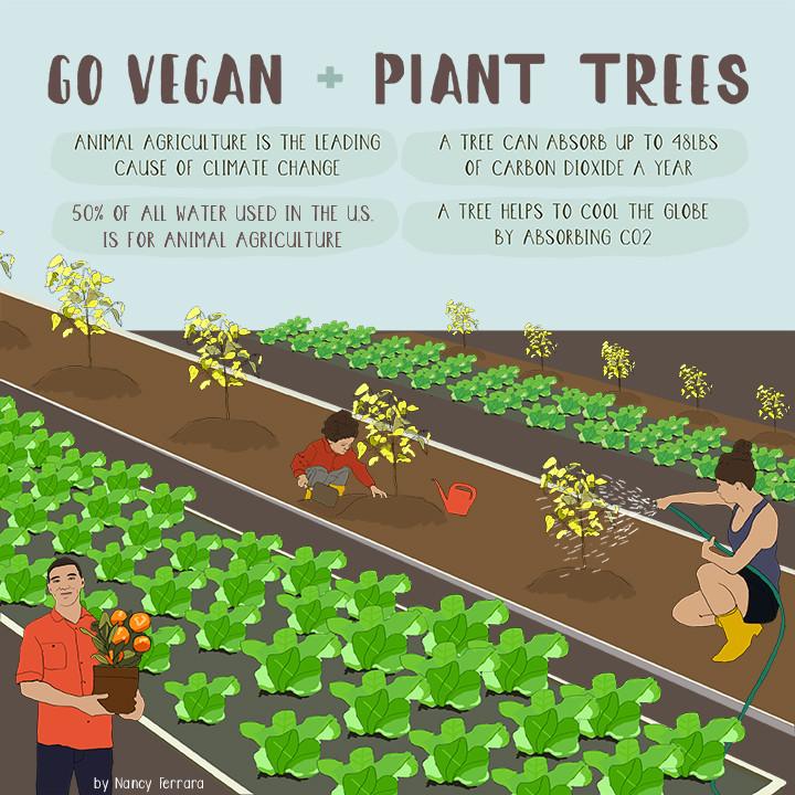 Go Vegan Plant Trees