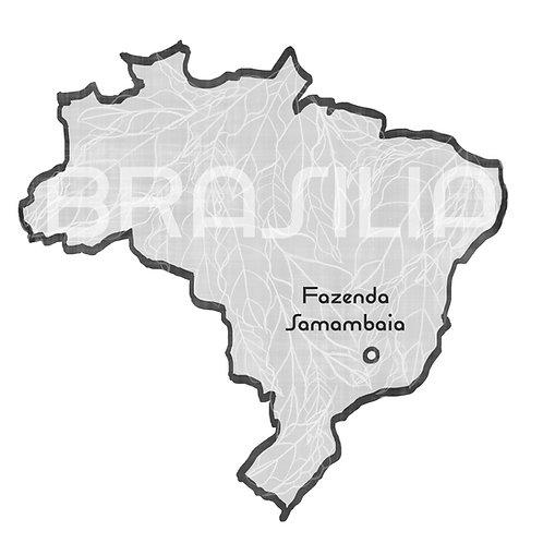 Fabrício's Topazio