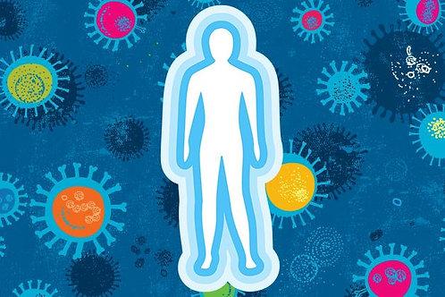 Build Your Immune System 2-Hr Workshop