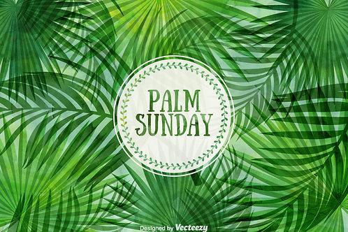 Jesus Enters Jerusalem: Story & Stretch Session for Palm Sunday
