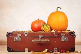 Traveling This Holiday Season? Don't Forget Your Dosha!