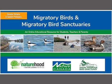 Migratory Bird Activity Resource