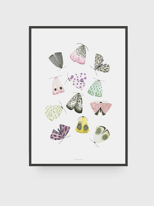 """Art Print """"Moths"""" (A4)"""
