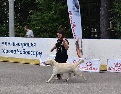 Улан бежит.jpg