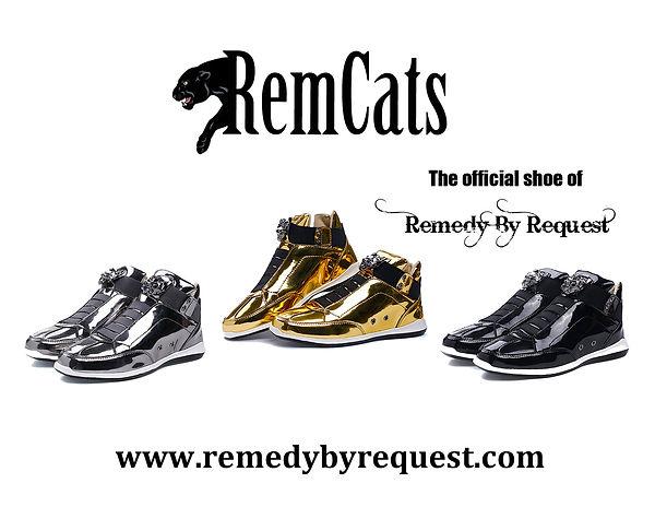 Official RemCats Flyer.jpg