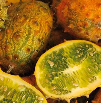 Cucumber, Jelly Melon