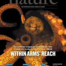 The first sequenced cephalopod genome is published!