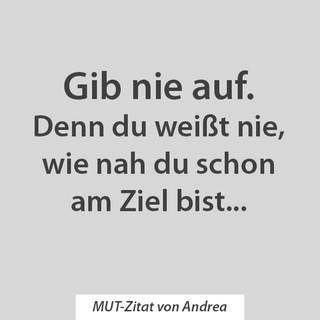 MUT Zitat Andrea_3.jpg