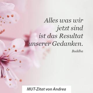 Andrea_HP.jpg