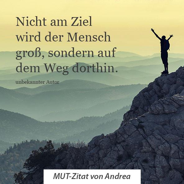 Andrea_HP_2.jpg