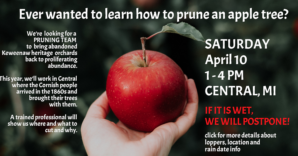 APPLE PRUNING EVENT.png