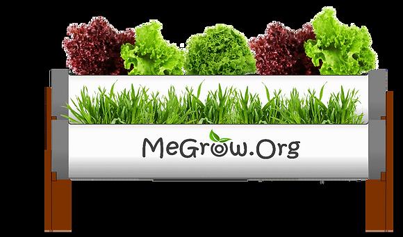 MeGrow Mini microfarm