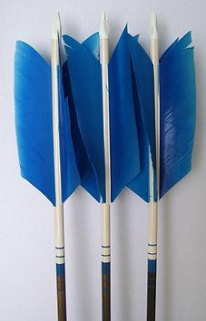 blueflu.JPG