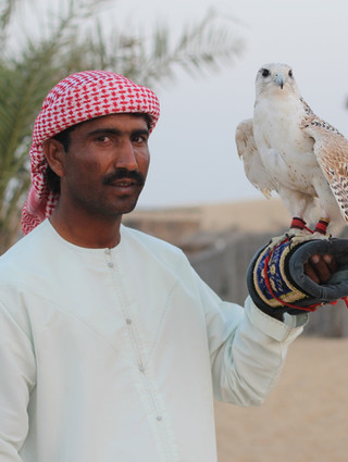 Culture and Wildlife