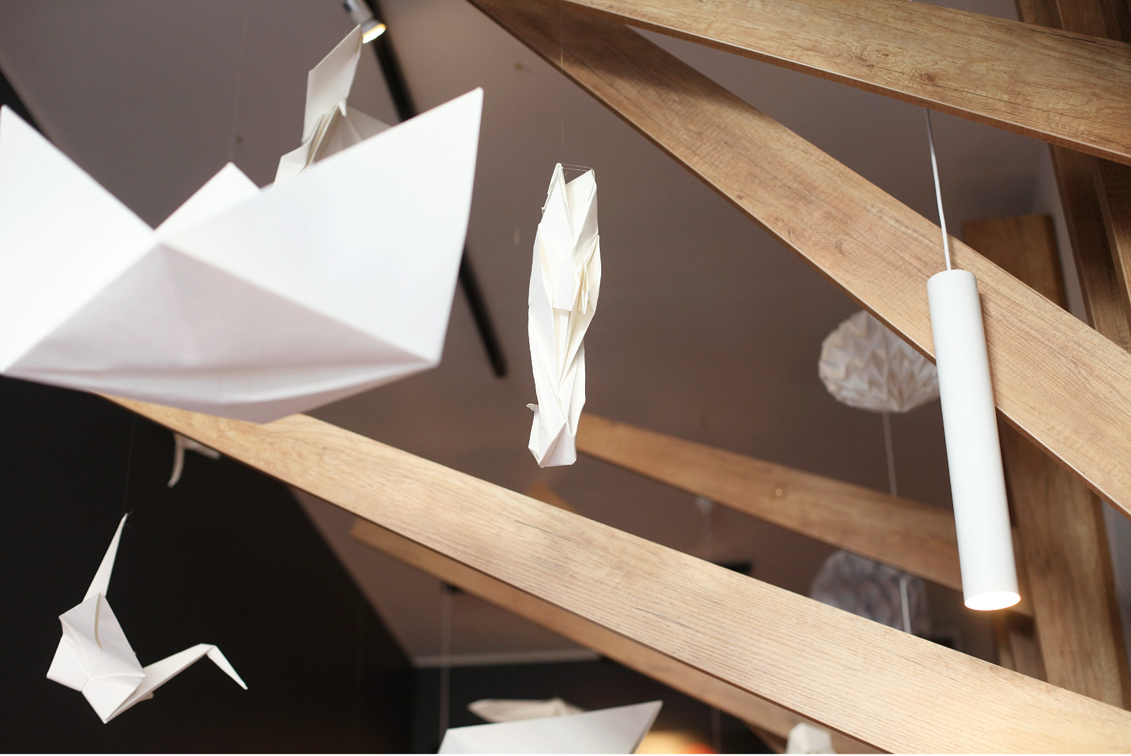 3 design interior temaki sushi cluj napo