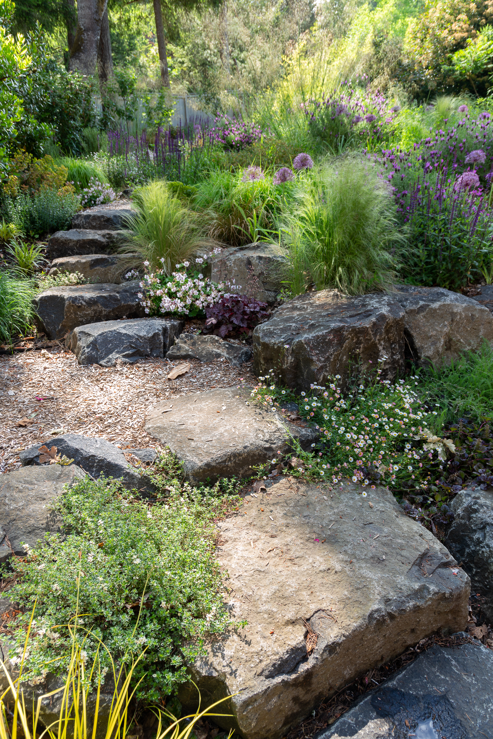 Garden Meadow SE Eugene-0609-web
