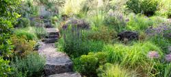 Garden Meadow SE Eugene-0613-web