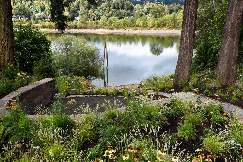 Willamette River - Pistils Landscape Des