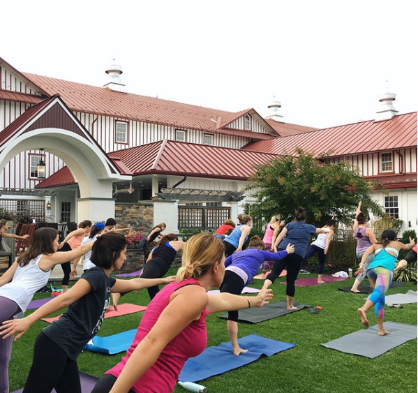 Yoga at Normandy Farm