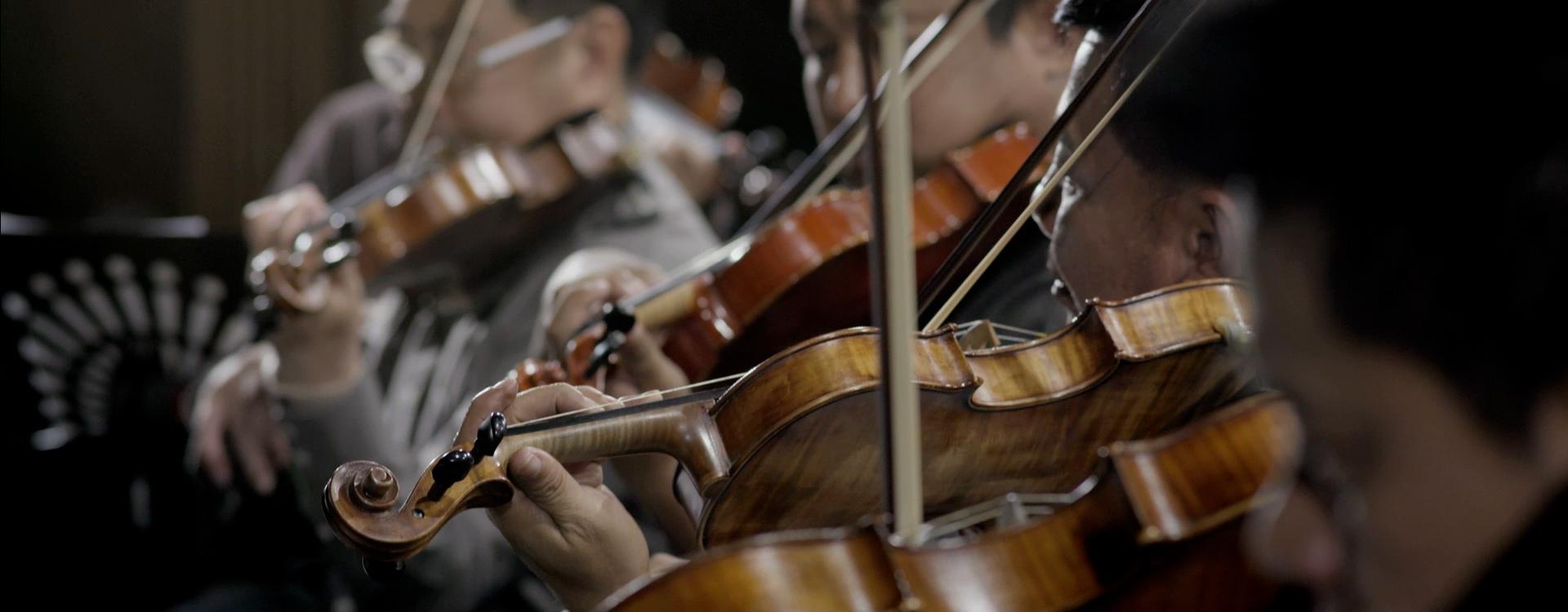 NUTRI MASTER - Orchestra