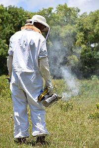 sacramento beekeeping supply