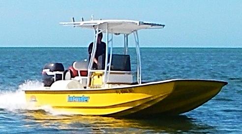 Tampa Trib._edited.jpg